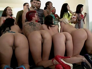 Five professional asses in a..